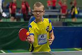 Friese kampioenschappen tafeltennis 2015