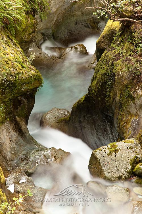 Routeburn, canyon gorge, New Zealand