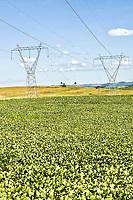 Torres de transmissão de energia da Usina Hidrelétrica Quebra Queixo em meio a plantação de soja. Ipuaçu, Santa Catarina, Brasil. / <br /> High power electrical transmission towers on a soybean plantation. Ipuaçu, Santa Catarina, Brazil.