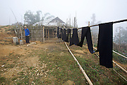 Hilltribe villages around Sapa. Black Hmong dying his clothes with indigo.