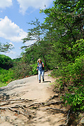 Conkles Hollow State Nature Preserve at Hocking Hills State Park, in Hocking County near Logan, Ohio, USA.