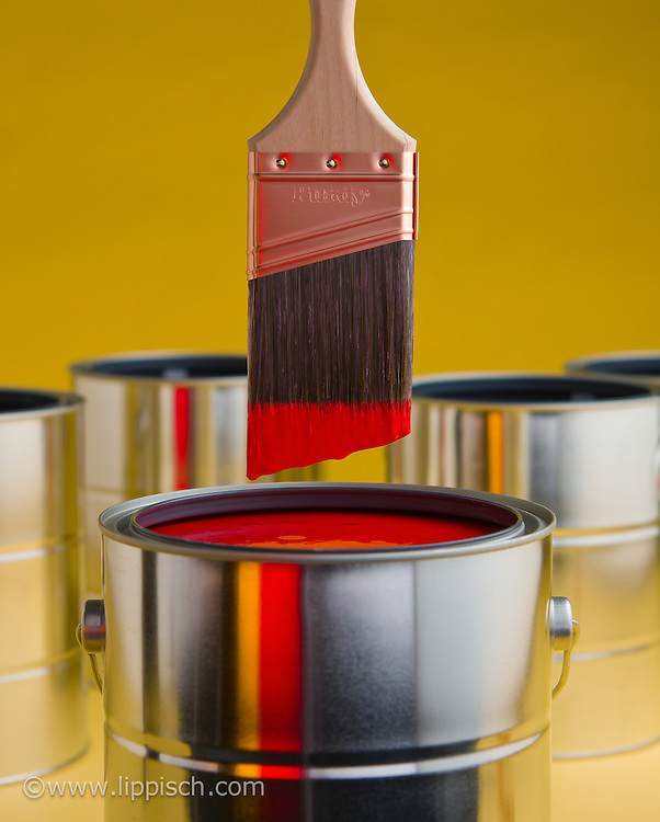 Cover photograph for a paint brush catalog.