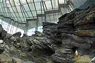 PRT, Portugal: Oceanario de Lisboa, das zweitgroesste seiner Art weltweit, Lebensraum Antarktis mit Magellan Pinguinen (Spheniscus maggelanicus), Lissabon, Lissabon   PRT, Portugal: Oceanario de Lisboa, the second largest world wide, habitat Antarctic with Magellanic Penguins (Spheniscus Magellanicus), Lisbon, Lisbon  