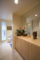 Cupboard storage and large mirror with glass bricks in palm Springs bathroom