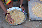 A women checks her grain before making flour oustide her home in Sendhwa, India.