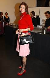 HENRIETTA DUPS at an exhibition of photographs by Matthew Mellon entitled Famous Feet - featuring well known people wearing shoes from Harrys of London, held at Hamiltons Gallery, Carlos Place, London on 22nd November 2004.<br /><br />NON EXCLUSIVE - WORLD RIGHTS
