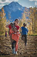 Anchorage East Rotary members and families harvest potatos for the Food Bank of Alaska in the Matanuska Valley, Alaska