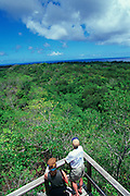 Bloody Ridge, Guadacanal, Solomon Islands<br />