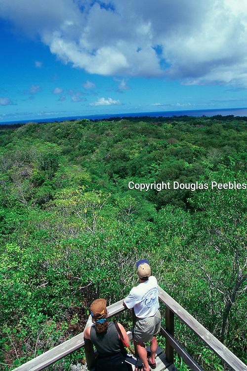 Bloody Ridge, Guadacanal, Solomon Islands<br />