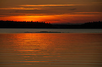 Harpswell Maine June 2015.  Karen Bobotas Photographer