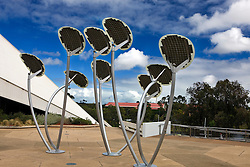 Solar panels sculpted as Mallee Trees harvest the sun's energy in front of the Adelaide Festival Center, Adelaide, South Australia, Australia