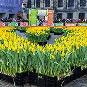 NLD/Amsterdam/20190119 - Nationale Tulpendag 2019, doop tulp Quinty Trustfull, Tulpen op de Dam