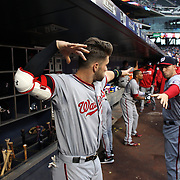 NEW YORK, NEW YORK - May 17: Bryce Harper #34 of the Washington Nationals and Stephen Drew #10 of the Washington Nationals during a pre game ritual in the dugout before the Washington Nationals Vs New York Mets regular season MLB game at Citi Field on May 17 2016 in New York City. (Photo by Tim Clayton/Corbis via Getty Images)