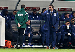 Interim England Manager Gareth Southgate argues with the fourth official - Mandatory by-line: Robbie Stephenson/JMP - 11/10/2016 - FOOTBALL - RSC Stozice - Ljubljana, England - Slovenia v England - World Cup European Qualifier