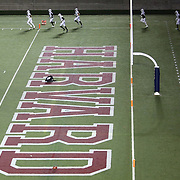 Members of the Blacktips take the field prior to the first ever Boston Brawlers home game at Harvard Stadium on October 24, 2014 in Boston, Massachusetts. (Photo by Elan Kawesch)