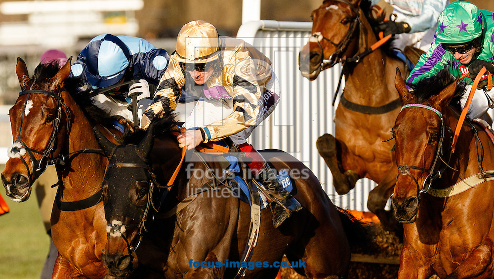 Wayne Hutchinson on Ordo Ab Chao (Green/blue) en route to being the 16-1 winner of the Neptune Investment Management Novices Hurdle during the Cheltenham Festival Trials at Cheltenham Racecourse, Cheltenham<br /> Picture by Mark Chappell/Focus Images Ltd +44 77927 63340<br /> 24/01/2015
