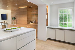 4116 Legation Kitchen VA2_107_255_Jan_Mach_2018