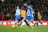 Hull City v Brighton and Hove Albion 160216
