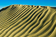 Pattern in sand dunes<br /> <br /> Great Sand Hills<br /> Saskatchewan<br /> Canada