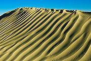 Pattern in sand dunes<br /> <br /> Great Sand Hills<br /> Saskatchewan<br /> Canada