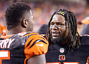 Cincinnati Bengals outside linebacker Vontaze Burfict (55) talks to Cincinnati Bengals defensive end Wallace Gilberry (95) on the sideline during the NFL AFC Wild Card playoff football game against the Pittsburgh Steelers on Saturday, Jan. 9, 2016 in Cincinnati. The Steelers won the game 18-16. (©Paul Anthony Spinelli)