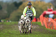 2 dog scooter competitor during the WSA Dryland World Championship 2019 at Firle Country Estate in the South Downs National Park, Lewes, Sussex, United Kingdom on 16 November 2019.