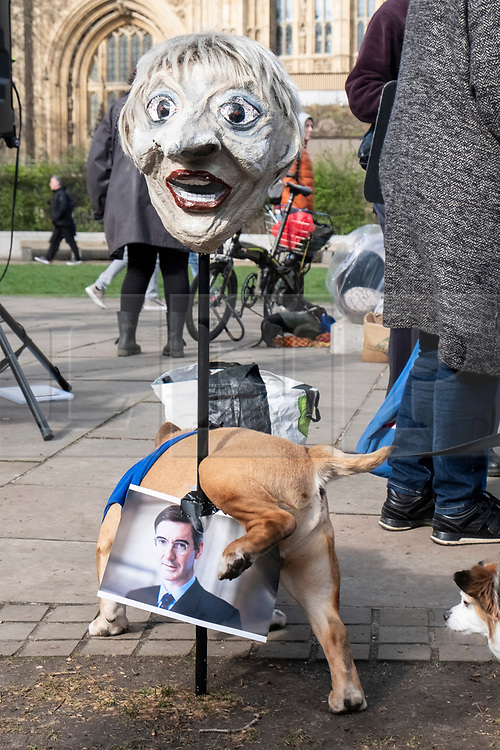 © Licensed to London News Pictures. 10/03/2019. London, UK. A dog unirates on a photograph of BrexiteerJacob Rees-Mogg during the Brexit Is A Dog's Dinner! protest in Westminster. Dog owners and their dogs demonstated with a clear message for politicians to ensure a no-Brexit deal is avoided. Photo credit: Ray Tang/LNP