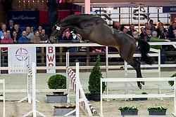 034, Riesling van de Gaathoeve<br /> BWP Hengstenkeuring -  Lier 2020<br /> © Hippo Foto - Dirk Caremans<br />  17/01/2020