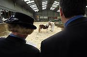 Nederland, bergharen, 26-9-2003..Keurmeesters bekijken een Shetland pony op een keuringsdag. Hobbydier, paardenmarkt..Foto: Flip Franssen/Hollandse Hoogte