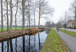 Leeuwenlaan, bomenkap op Hilverbeek, Stopbergen, 's-Graveland, Wijdemeren, Noord Holland, Netherlands