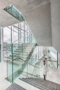 Djavad Mowafaghian Centre for Brain Health, UBC | Stantec Architecture