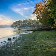 Dash Point Beach - WA