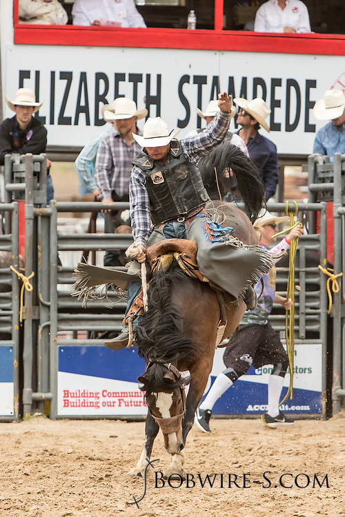 Saddle brond rider Lane Stirling rides Summit Pro Rodeo's Crying Time during the third performance of the Elizabeth Stampede on Sunday, June 3, 2018.