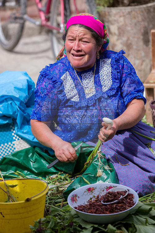 An elderly Zapotec woman selling spring onions at the Sunday market in Tlacolula de Matamoros, Mexico. The regional street market draws thousands of sellers and shoppers from throughout the Valles Centrales de Oaxaca.