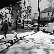 A Street Scene on the Boulevard de Grenelle as an individual walks with her dog in Paris, France, October 21, 2007. Photo Tim Clayton..Paris is often known as 'The City of Love' but like any major City in the world, the inhabitants often live a singular existence, going about their daily lives in relative solitude. Parisians are respectful of each others space, often courteous and polite while extremely conscious of their own image. While love can be seen openly around the streets of Paris, so can the separate lives of Parisians.