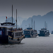Tourist boats on Halong Bay (Halong Bay (Descending Dragon), Vietnam - Nov. 2008) (Image ID: 081114-1234171a)