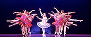 Les Ballets Trockadero de Monte Carlo <br /> at the Peacock Theatre, London, Great Britain <br /> press photocall <br /> 16th September 2015 <br /> <br /> <br /> Programme 1<br /> press night 16th September 2015 <br /> <br /> Paquita <br /> Chase Johnsey as Yakaterina Verbosovich<br /> <br /> <br /> <br /> <br /> Photograph by Elliott Franks <br /> Image licensed to Elliott Franks Photography Services 5th January 2018 - News that on New Year's Day, the dancer shared a video on YouTube announcing his resignation from the all-male troupe Les Ballets Trockadero de Monte Carlo giving his reasons as the negative way he was treated by the company after announcing his intension to 'transition' (from male to female).