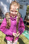 LIttle girl with a great big smile holding a massive snake at the Thousand Springs Art Festival at Ritter Island near Hagerman, Idaho. MR