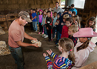 Jeff Keyser gives Mrs. Phillip's 4th graders from Gilmanton Elementary a chance to feel freshly sheared fleece from his Suffolk Sheep during their field trip to Ramblin' Vewe Farm in Gilford on Wednesday.  (Karen Bobotas/for the Laconia Daily Sun)