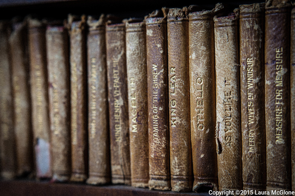 Shakespeare vintage antique leather bound books on shelf