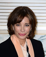 APR 09 2014 Anne Archer attends photocall