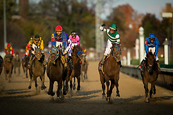 Accelerate with Joel Rosario up trained by John Sadler win the 35th Breeders' Cup Classic, Saturday, Nov. 03, 2018 at the Churchill Downs  in Louisville. This win makes the first Breeders' Cup Classic win for the trainer.