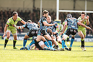 Dave Lewis of Exeter Chiefs (centre) clears from the scrum  during the LV Cup Final match at Sandy Park, Exeter<br /> Picture by Andy Kearns/Focus Images Ltd 0781 864 4264<br /> 16/03/2014