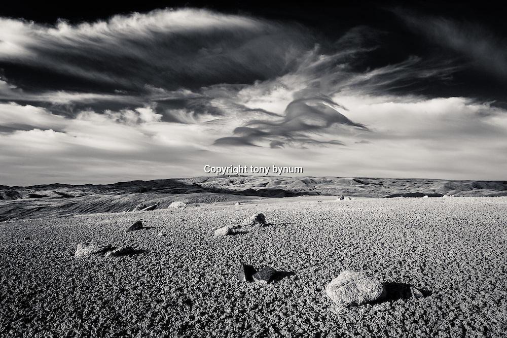 gumbo and wispy clouds over montana prairie