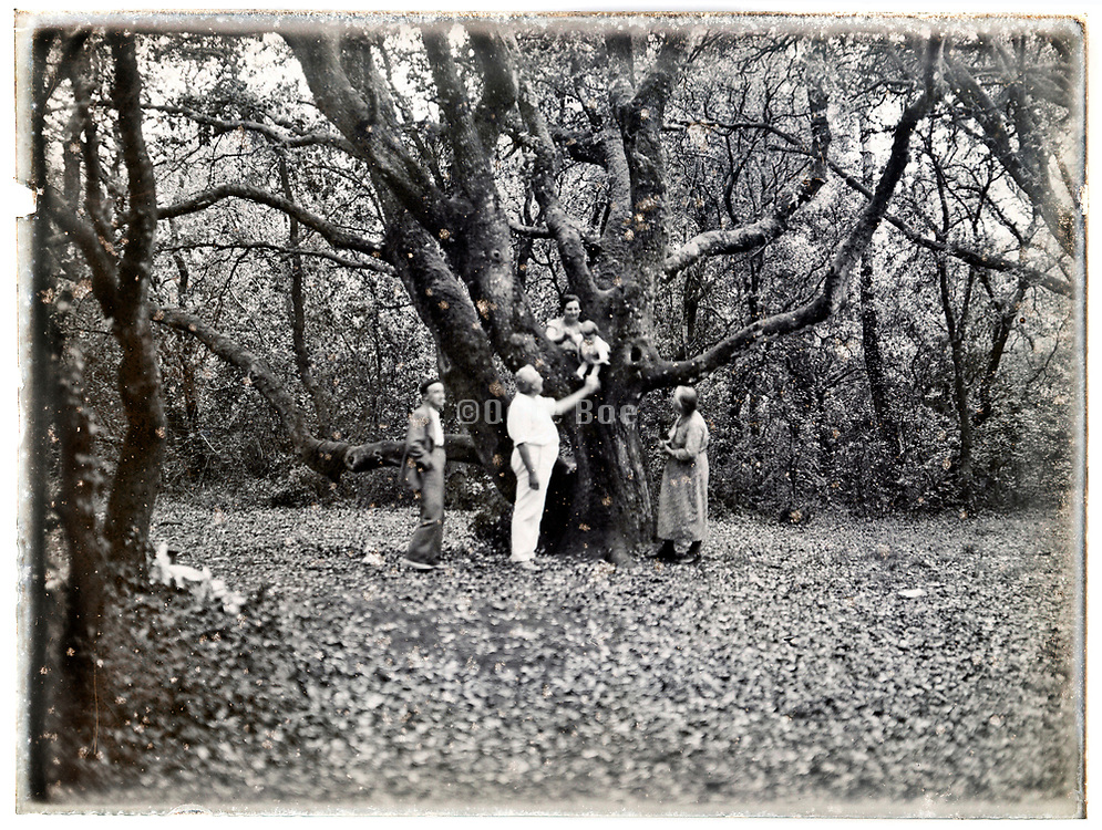1920s glass plate of family together in the woods blurry