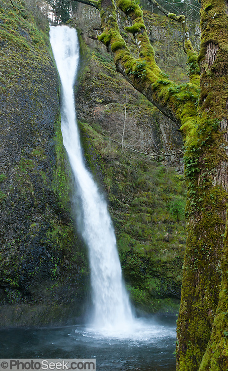 Horsetail Falls on Horsetail Creek, along Historic Columbia River Highway, Columbia River Gorge National Scenic Area, Oregon