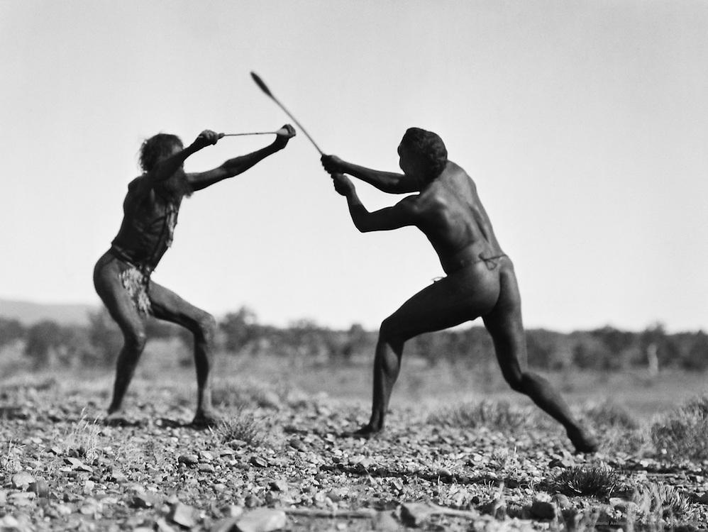Aborigines fencing, Central Australia, 1930