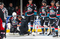 KELOWNA, CANADA - SEPTEMBER 28: Athletic therapist, Scott Hoyer kneels on the ice with Michael Herringer #30 of Kelowna Rockets after a collision with a player of the Prince George Cougars on September 28, 2016 at Prospera Place in Kelowna, British Columbia, Canada.  (Photo by Marissa Baecker/Shoot the Breeze)  *** Local Caption *** Scott Hoyer; Michael Herringer;