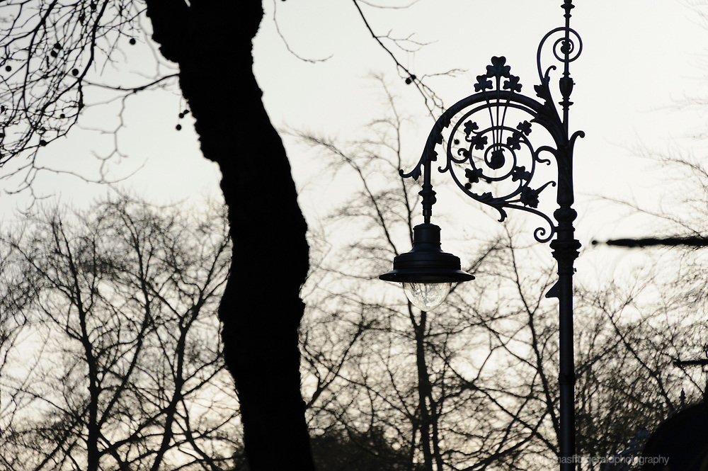 A silhouette of one of Dublin's famous and iconic Lamp postts against a background of winter trees