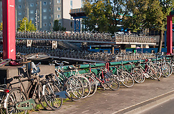 Bikes awaiting their owners outside the Amsterdam Central Train Station.